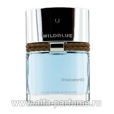 Banana Republic Wildblue